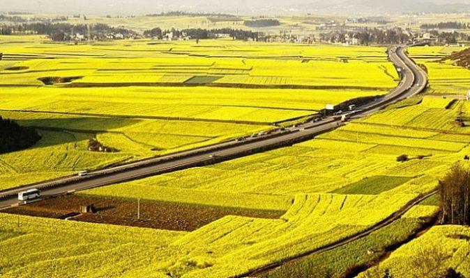 thue dat gia re 674x400 - Đất nông nghiệp là gì? Những thắc mắc về đất nông nghiệp